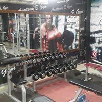 Abohar-Lajpat-Nagar-Anatomy-E-Gym_1826_MTgyNg_NzYzMw