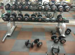 Gurugram-Sector-23-Body-fitness-gym_626_NjI2_Mjk3Mg