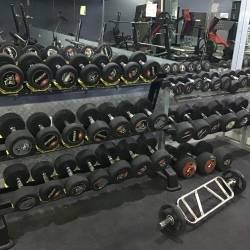 Jaipur-Jawahar-Nagar-DFit3-Fitness-Gym-And-Aerobics-Yoga-Center_502_NTAy