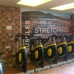 New-Delhi-Vasant-Kunj-The-Bodyline-Gym_773_Nzcz