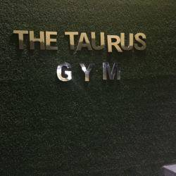 Noida-Sector-49-The-Taurus-Gym_838_ODM4