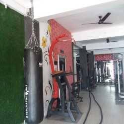 Udaipur-Subhash-Nagar-Dolphin-Health-Club-_426_NDI2_MTQ1NA