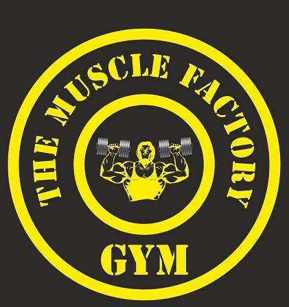 Vadodara-Sayajigunj-The-Muscle-Factory_1073_MTA3Mw