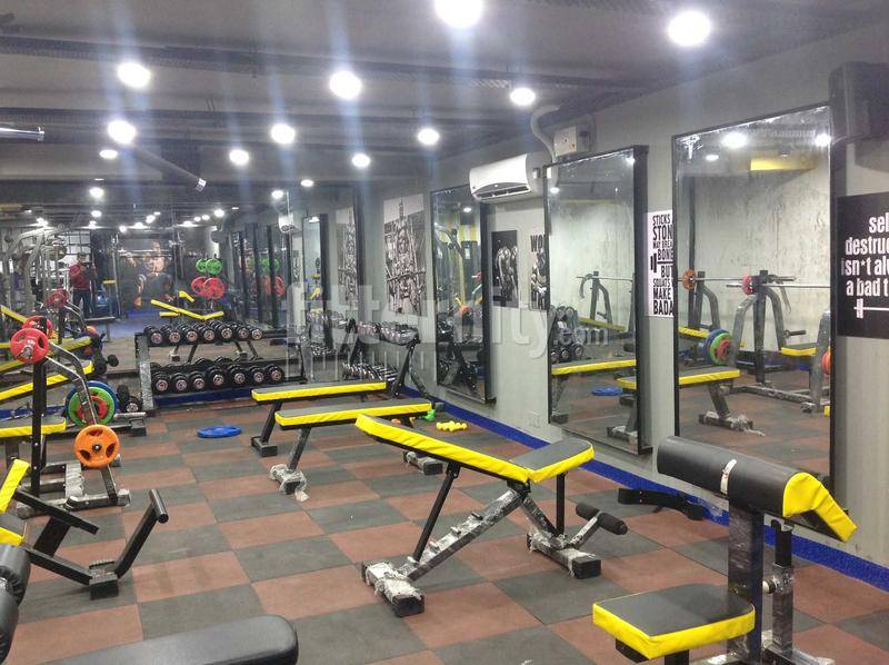 chandigarh-sector-33-Akhada-Health-and-Fitness-Club-Best-Gym_1176_MTE3Ng_OTY0MQ