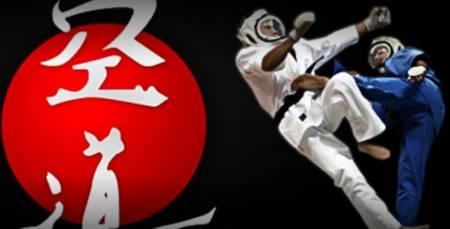 vadodara-vasna-KUDO-MMA-KARATE-CLASSES_2548_MjU0OA